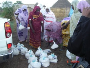 Women in Sudan. Credit: Zenab for Women in Development.
