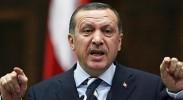 Arab Spring, Turkish Summer?