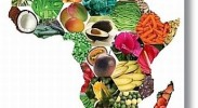 Malawi Makes, Africa Takes?