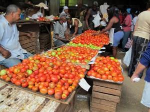 cuba-markets-castro-liberalization