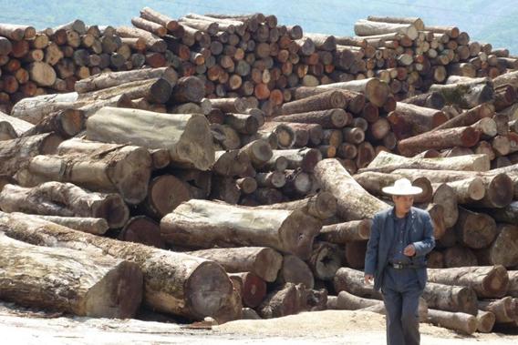 Making Myanmar Work