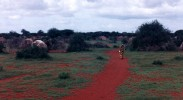 kenyan-somalis-human-rights-discrimination-refugees-westgate-mall