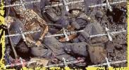 drone-war-global-war-terror-civil-liberties-assassination-due-process-jeremy-scahill-dirty-wars.