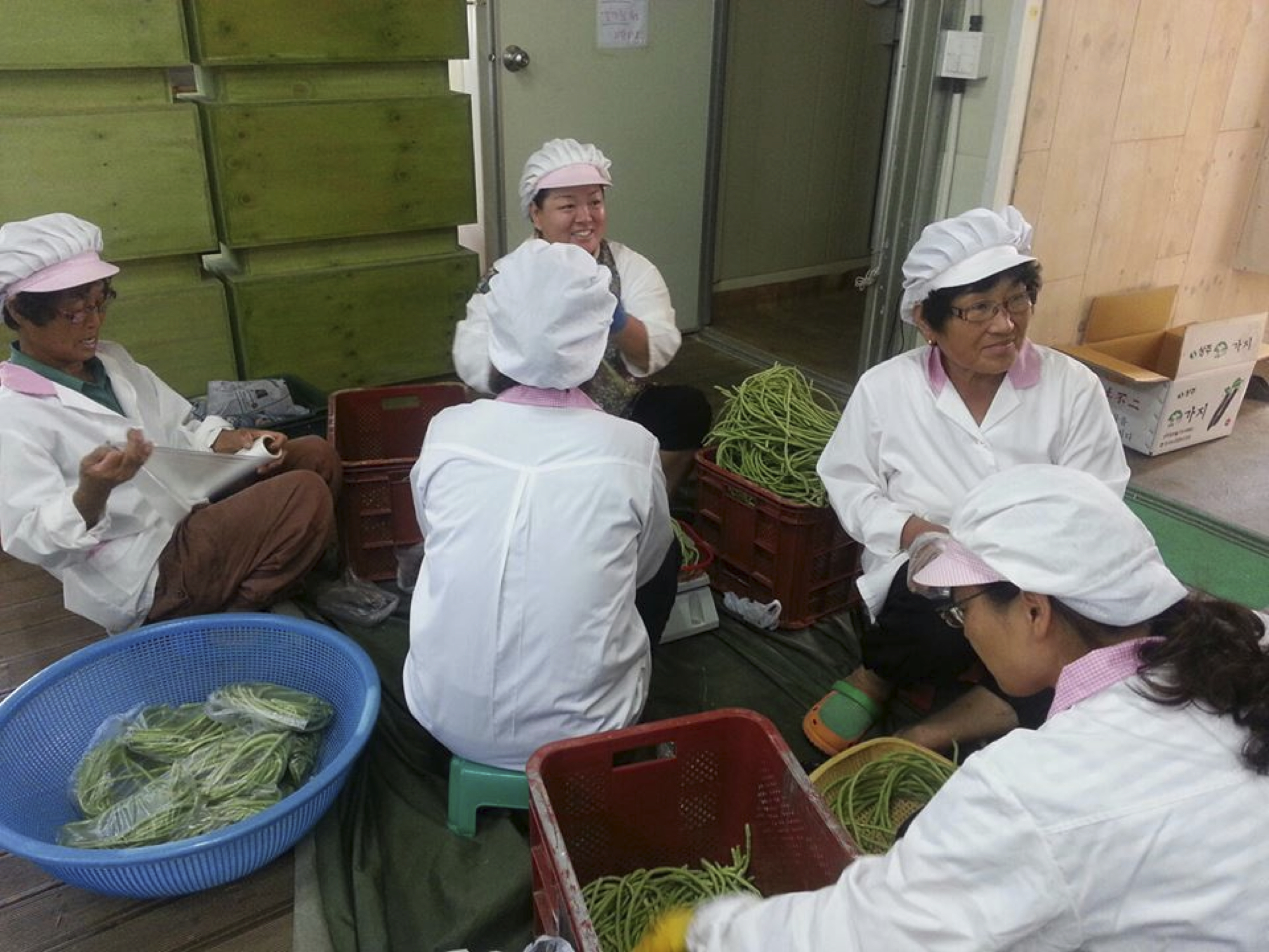 kwpa-sisters-garden-food-sovereignty-organic-agriculture-korea