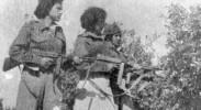 stern-gang-irgun-betar-syria-civil-war-jihadists