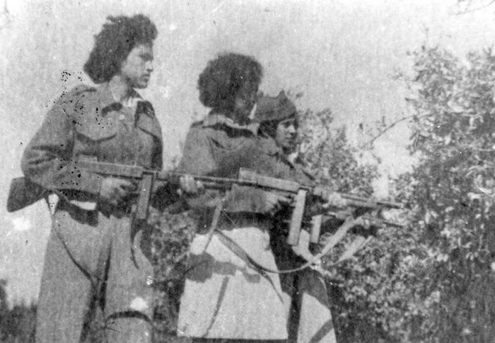 stern-gang-irgun-betar-syria-civil-war-jihadists