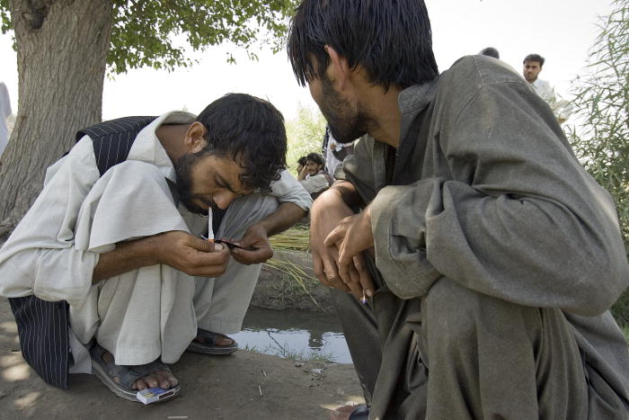 drug-war-afghanistan-opium-poppies