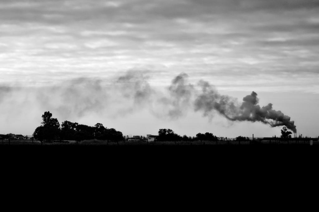 carbon-trading-africa-world-bank-cdm-clean-development-mechanism-ci-dev