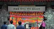 south-korea-sewol-ferry-tragedy-disaster-park-geun-hye-katrina