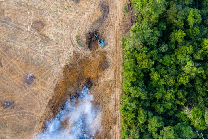 amazon-fires-walmart-cargill-blackrock-brazil-bolsonaro